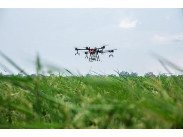 Використання дронів у сільському господарстві